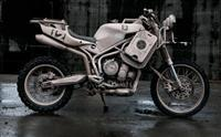 icon1000-Dromedarii-triumph-tiger thumb